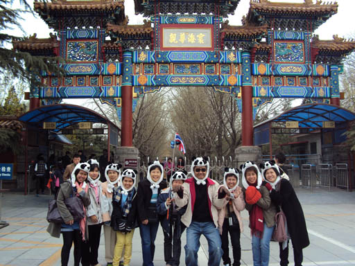 http://www.toursmyworld.com/package-tour-korea